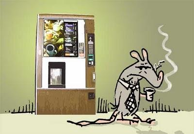 kontori-rott-toonarkomaan